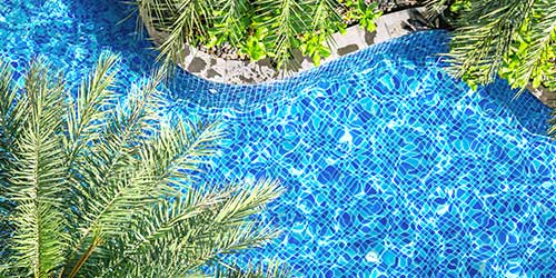 Palm trees surrounding a pool with a blue tile floor